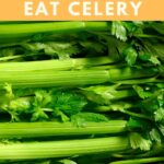 Can Parakeets Eat Celery?
