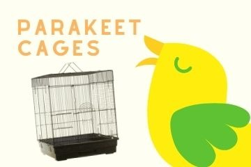 Shop For Parakeet Cages