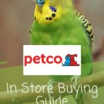 How Much Do Parakeets Cost At Petco? In Store Buying Guide